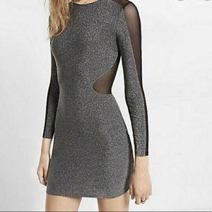 Express Mesh Sleeve Metallic Mini Dress